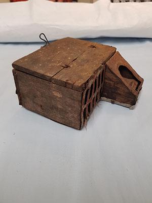 Mouse trap 2
