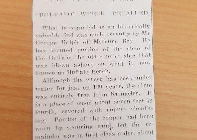 1936 Article - Buffalo Stem find