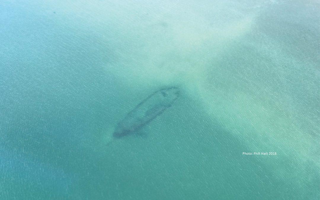 New Zealand Archaeology Week: HMS Buffalo – A ship and its survey